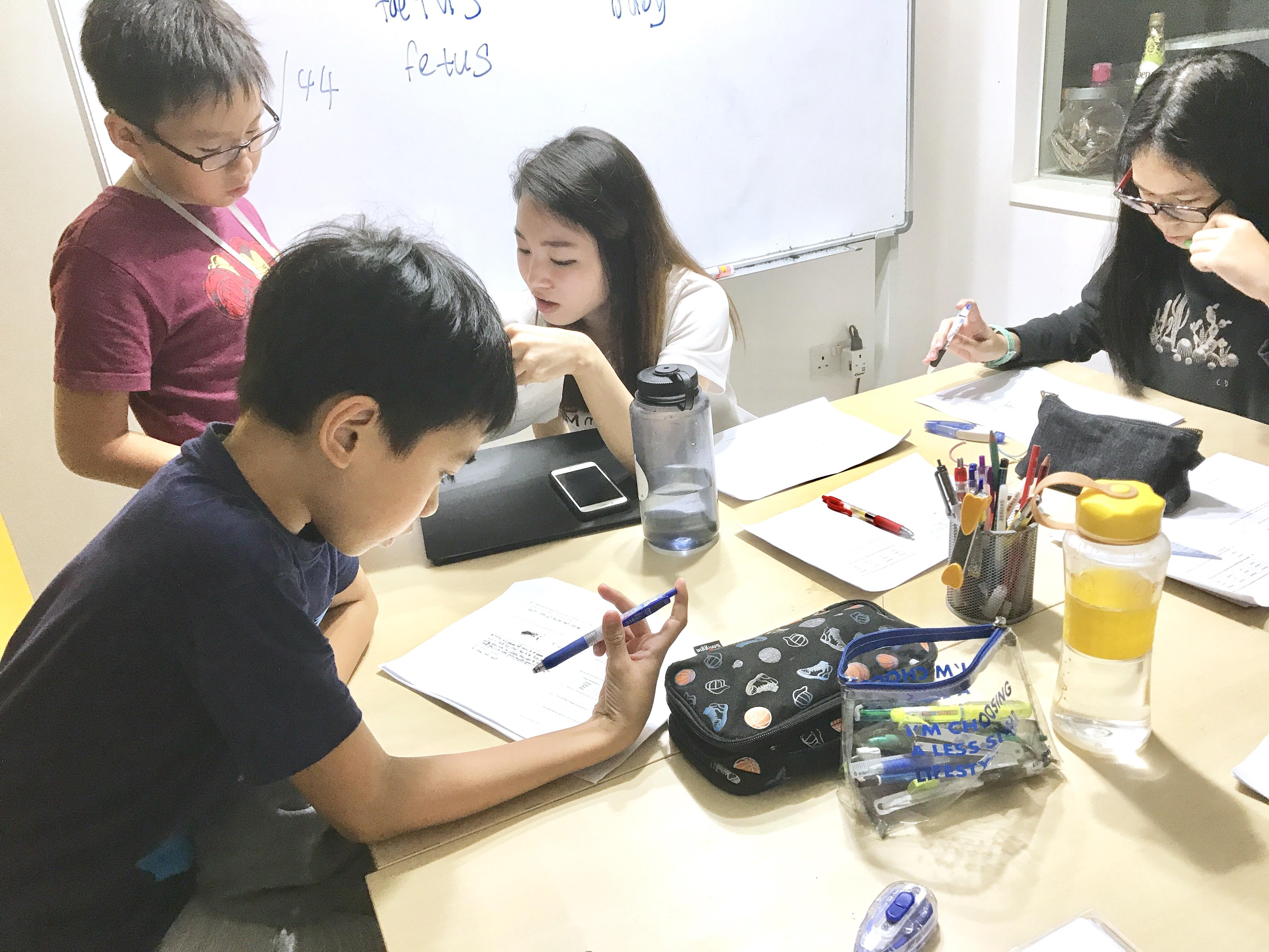 Punggol English and Mathematics Tuition Tutor Creative Writing PSLE P6 English